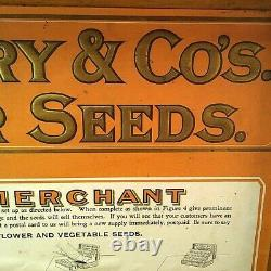 C. 1906 DM Ferry & Co Mercantile Flower Seed Box Oak Store Counter Display Case