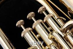 Yamaha YEP201 Euphonium Horn YEP 201 Baritone with Hard Case STORE DISPLAY wow